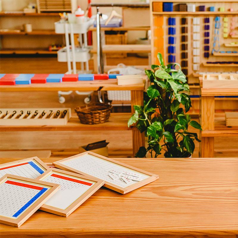 seetal-montessori-schule_paedagogol-vu-800